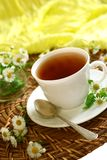 Cup of tea and chamomiles on wooden Royalty Free Stock Photos