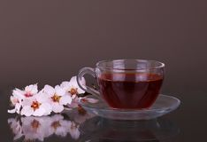 Cup of tea and cherry branch. On grey stock images
