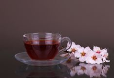Cup of tea and cherry branch. On grey royalty free stock photo