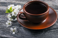 Cup of tea and  cherry  branch Stock Photography