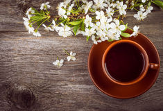 Cup of tea and  cherry  branch Royalty Free Stock Photography