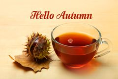 Cup of tea and a chestnut in a shell. A cup of tea and a chestnut in a shell on a wooden background. The inscription `Hello Autumn stock images