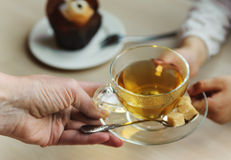 Cup of tea in the children's hands Stock Image