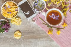 Cup of tea, chocolate, delicious nutritious cereal breads Stock Image