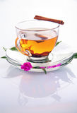 Cup of tea with cinnamon. Isolated on white royalty free stock image