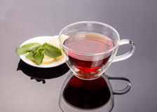 Cup of tea with cinnamon and mint Stock Images