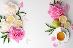 Cup of tea, citrus with fresh flowers peonies on white background. Holiday feminine breakfast, celebration morning concept. Top. View. Copy space royalty free stock photography