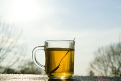 Cup of tea on a cold winter's day. A cup of tea on a cold winter's day Stock Images