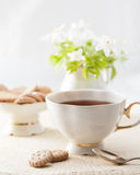 Cup of tea with cookies Royalty Free Stock Images
