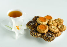 Cup of tea and cookies. Cup of coffee and cookies are on a grey background Stock Images