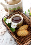 Cup of tea, cookies and spring branch Stock Images