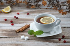 Cup of tea with cranberry and lemon piece Stock Photos