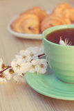 Cup of tea and croissants near blossoming branches Stock Image