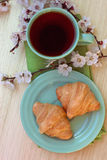 Cup of tea and croissants near blossoming branches Royalty Free Stock Images