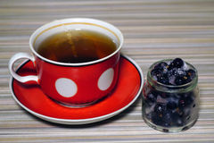 Cup of tea with currant frozen Stock Images