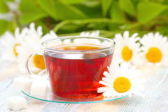 Cup of tea and daisy Royalty Free Stock Photos