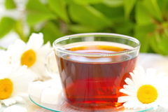 Cup of tea and daisy Stock Photos