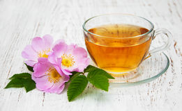 Cup of tea and dogrose Stock Photography