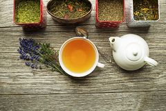 Cup of tea with dry tea and herbs collection. Cup of tea with dry tea collection of different types stock photo