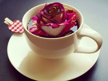 Cup of tea with dry rose Stock Photos