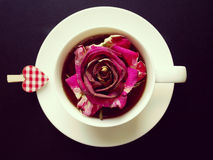 Cup of tea with dry rose Royalty Free Stock Photography