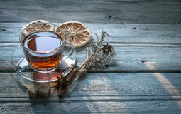 Cup of tea and dry twig herb Stock Photography
