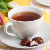 A Cup of Tea with Easter Egg Shaped Chocolate Candies Stock Images
