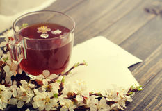 Cup of tea, empty old photo  and blossoming apricot branch Royalty Free Stock Photos