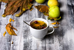 Cup of tea in the fall Royalty Free Stock Images