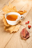 A cup of tea with falling autumn leaves of maple, and a berries of rowan on the background of the wood table Stock Images