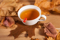 A cup of tea with falling autumn leaves of maple, and a berries of rowan on the background of the wood table. A still life with a cup of tea with falling autumn stock photography