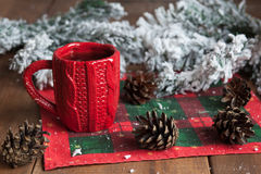 Cup of tea, fir cones, fir branches in the snow Stock Images