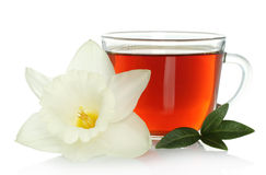 Cup of tea with flower and leaves Stock Image