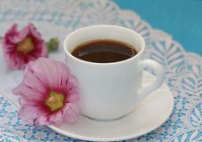 Cup of tea and flower Stock Images