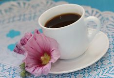 Cup of tea and flower Royalty Free Stock Photo