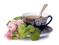 Cup of tea. With flowers royalty free stock photos