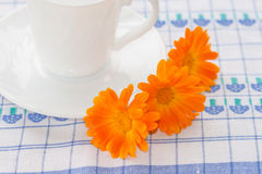 Cup of tea and flowers of calendula. Royalty Free Stock Photos