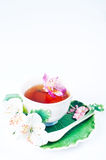 Cup of tea with  flowers Royalty Free Stock Photos