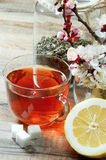 Cup of tea and flowers Royalty Free Stock Photos