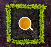 Cup of tea in frame of green branches on dark stone background. Top view. Cup of green tea in a frame of green bright branches on dark stone background. Top view Royalty Free Stock Images