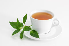 Cup of tea with fresh mint Stock Photos