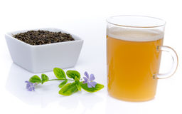 Cup of tea with fresh tea and a flower Stock Images