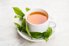 Cup of tea with fresh tea leafs Stock Photos