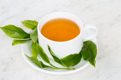 Cup of tea with fresh tea leafs Stock Images