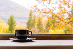 A cup of tea in front of a window with autumn view. royalty free stock photos