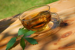 Cup tea in the garden Stock Photography