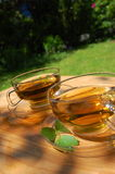 Cup tea in the garden. Cup of tea in the garden showing concept of gardening Stock Photography