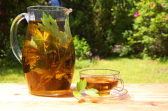Cup of tea in the garden Stock Images