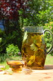 Cup of tea in the garden Stock Photography