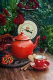 Cup of tea in the garden. Beautiful flowers and cup of tea with cookies at wooden table, autumn decor, Selective focus royalty free stock photos